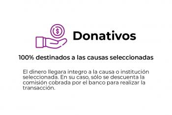 San Luis Dona ejemplos secciones-01